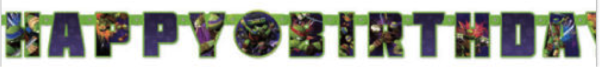 Teenage Mutant Ninja Turtles Add an Age Banner