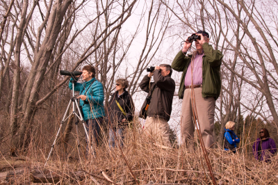 Bird Watching - Cranberry Marsh