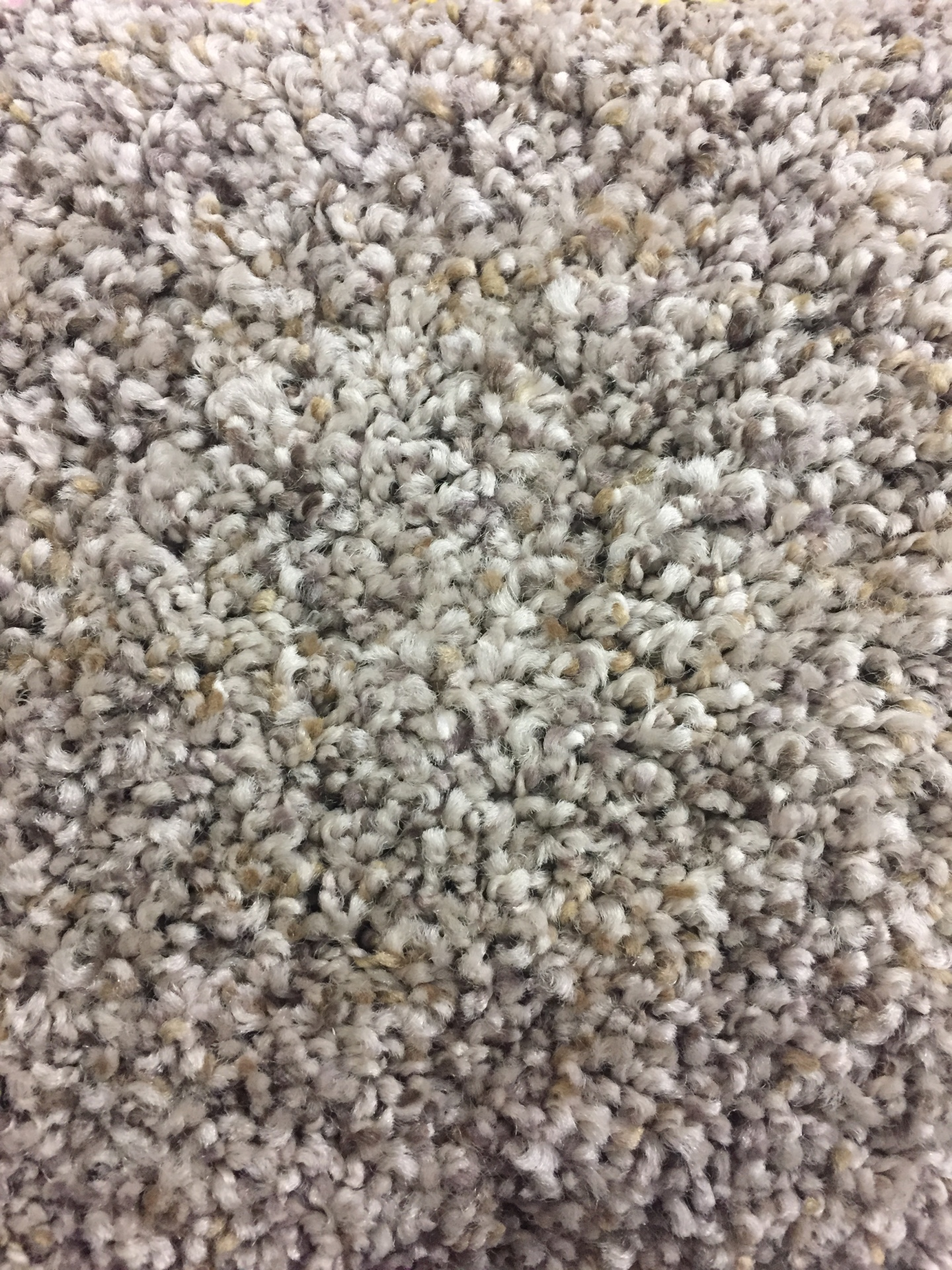 Mohawk Pleasing Qualities- $3.49 sq ft