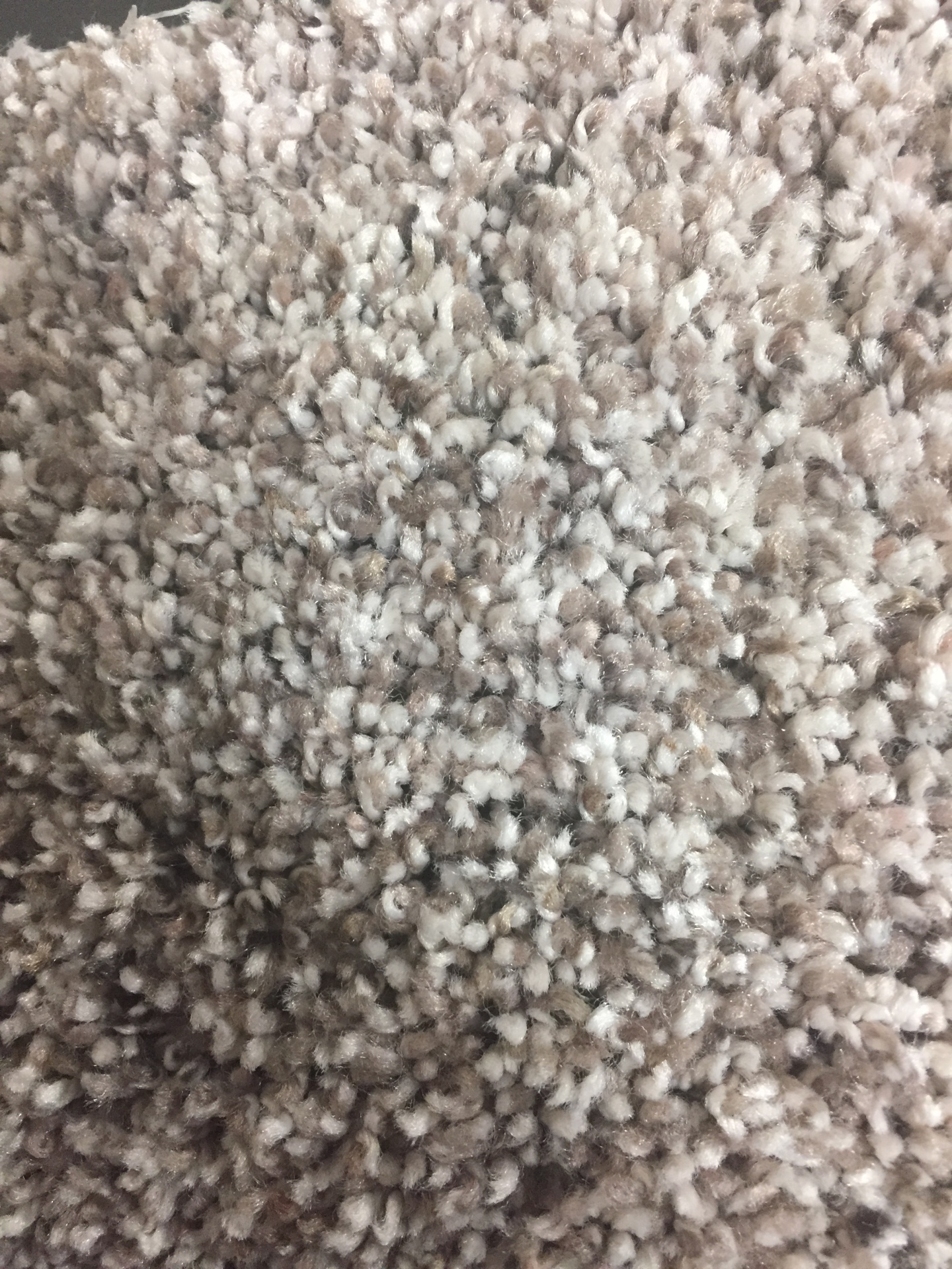 Mohawk Gracefully Soft 2- $2.99 sq. ft.