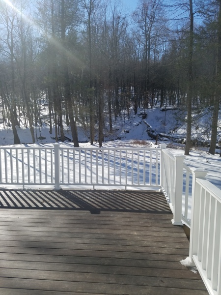 Deck And Back Yard