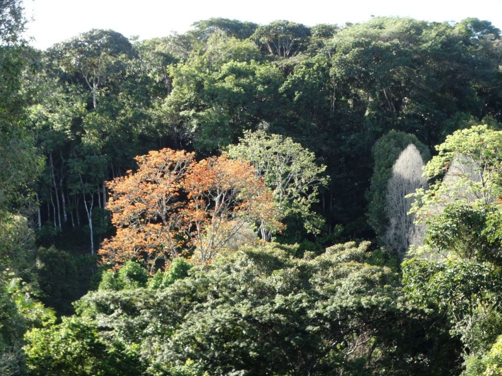 Reserva Espinita