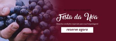 Festa da Uva - Caxias do Sul - RS - Hotel em Caxias do Sul