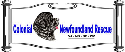 Colonial Newfoundland Rescue