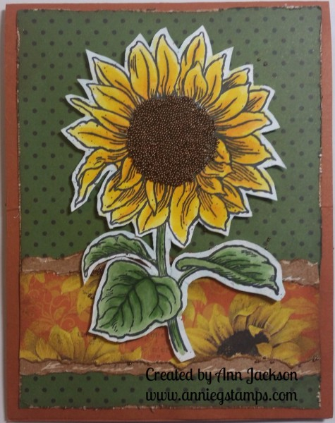 Sunflower Card Front