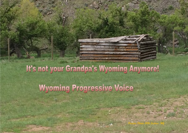 Wind, Water and Wildlife - Wyoming's only viable economic future