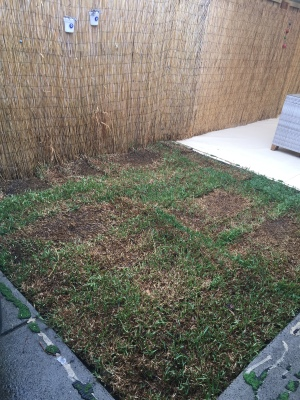 Another small turf job after