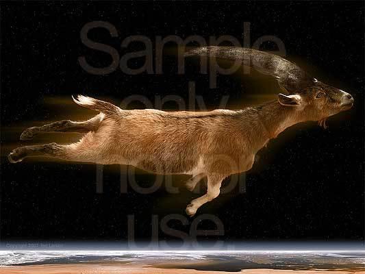 Daniel, prophecy, Medes, Persians,