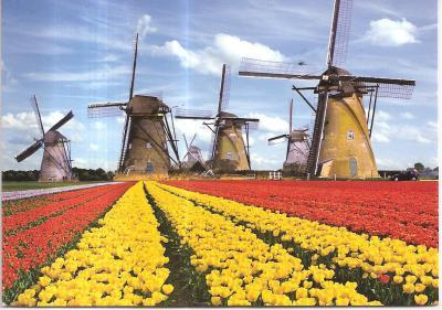 Venlo, Netherlands!