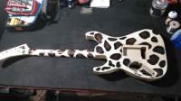 chaos guitars, chaos inc, Chaos, guitars, lehigh valley zoo