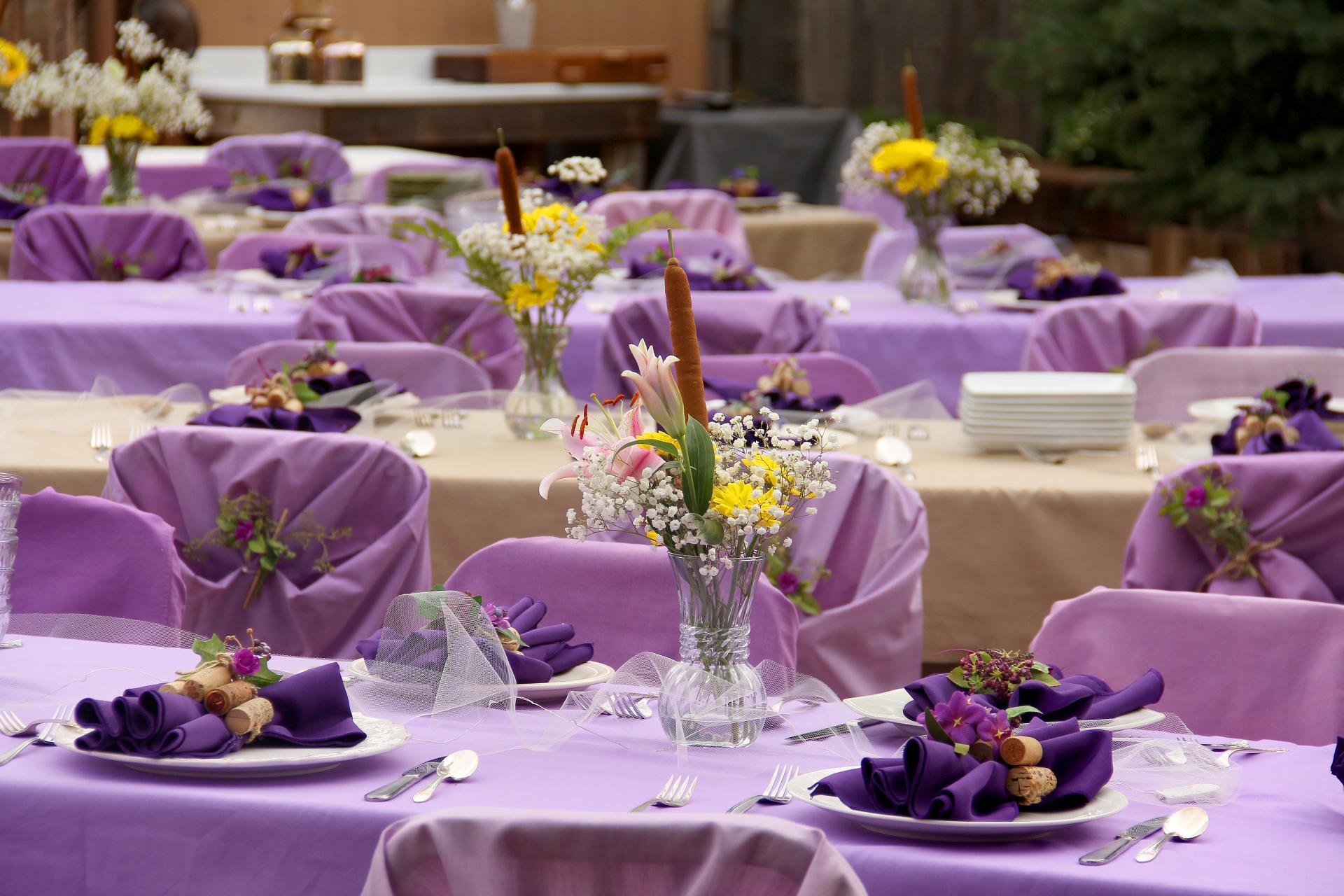 Wedding Venue Near Colorado Springs, Pueblo, Denver CO