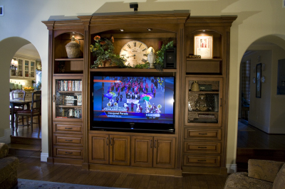 Entertainment Centers/ Media Niches