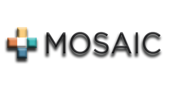 Mosaic Contractor