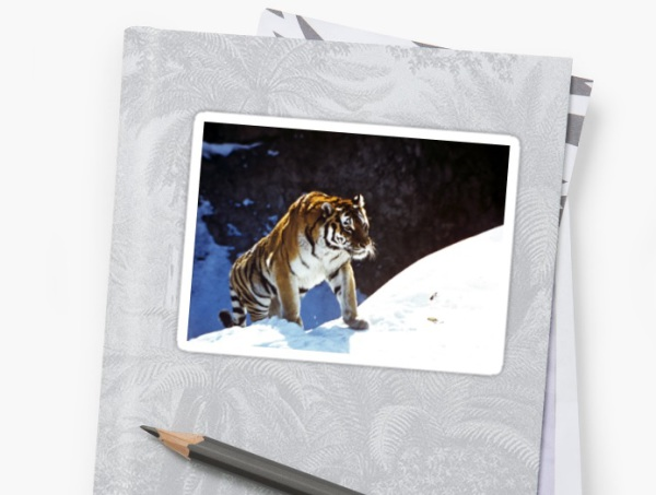 tiger, snow, mountains, accessories, animals, stickers