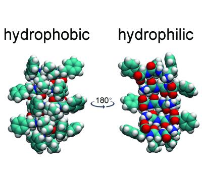 Heterochiral Peptides