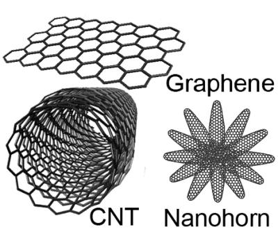 Nanocarbons