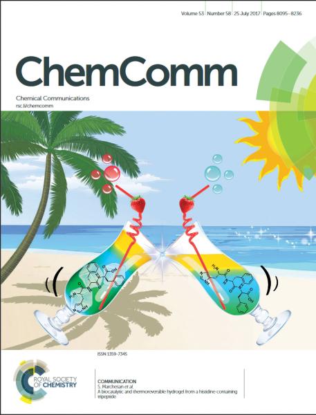 Chem Comm 2017