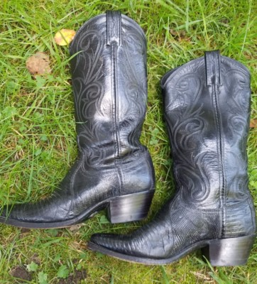 Western Boots  Left Side  Size 6.5