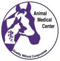 animal hospital, veterinary, veterinarian, animal emergency hospital, southeastern Kansas