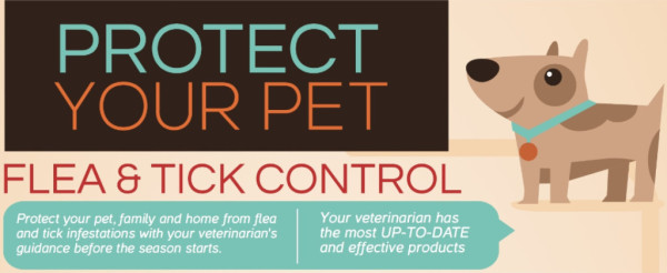 Protect your Pet: Heartworm Prevention