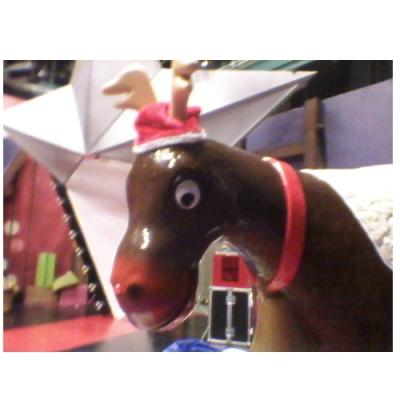 Utleie av Rodeo-Reindsyr