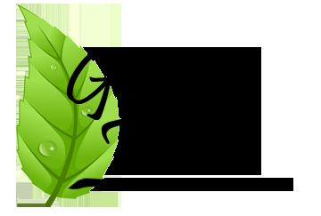 Green Team - Environmental Education