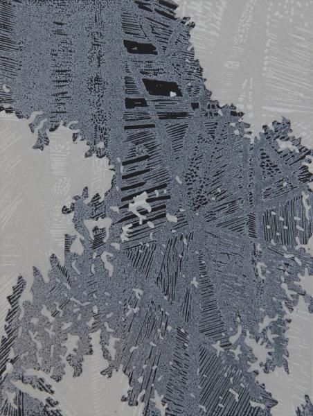 Reflection I: Susan Mannion