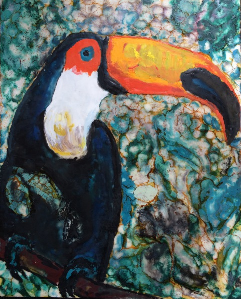 Endangered Toucans
