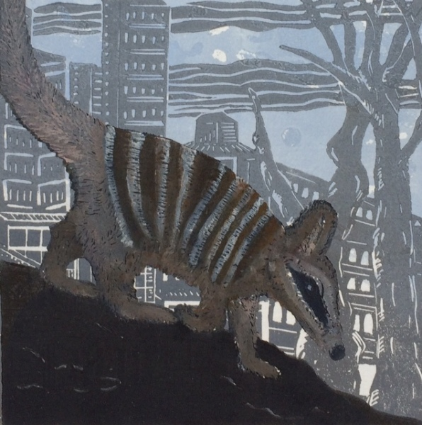 Numbat Nights