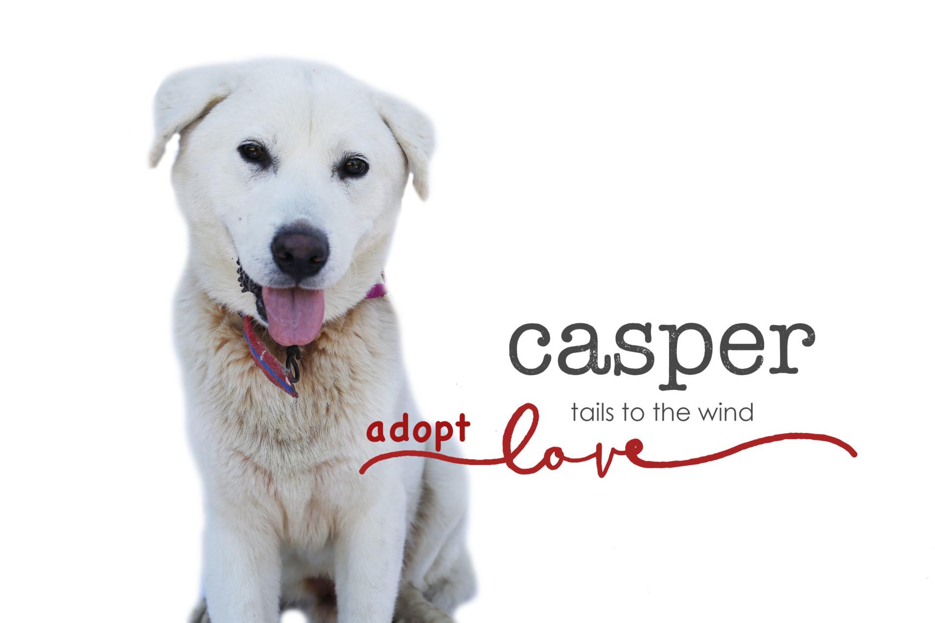Casper : ADOPTED