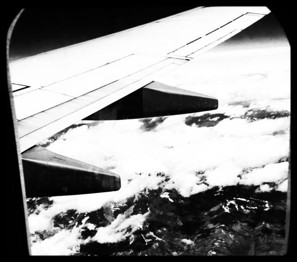 Taking Flight, Digital Still-Life Photography by Artist Mindy Lichter. MLICHTER fINE ART dESIGN