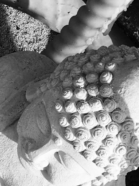 Zen, Digital Still-Life Photography by Artist Mindy Lichter. MLICHTER fINE ART dESIGN