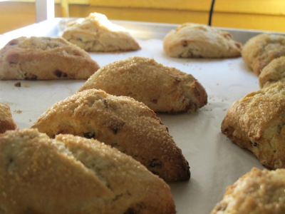 Fresh Scones and Muffins