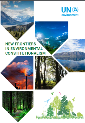 Quantitative Standards within the Environmental Provisions of National Constitutions – Bhutan and Kenya