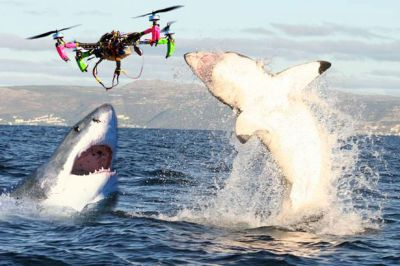 Use of Quadcopter Drones to detect Sharks in WSL Events