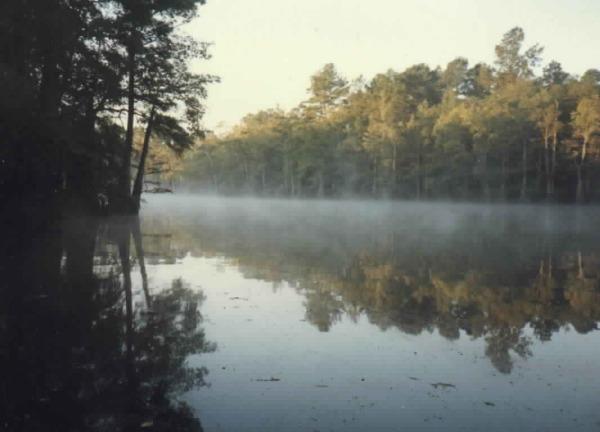 Monterey Lake at the family camp near Vivian, Louisiana