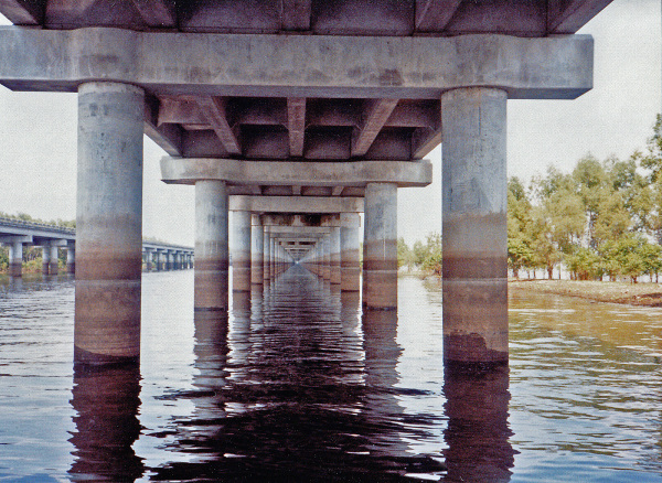 Under I10 in the Atchafalaya River Basin