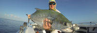 Watch Luke fishing land a metre + queenfish taken on a 4 inch popper