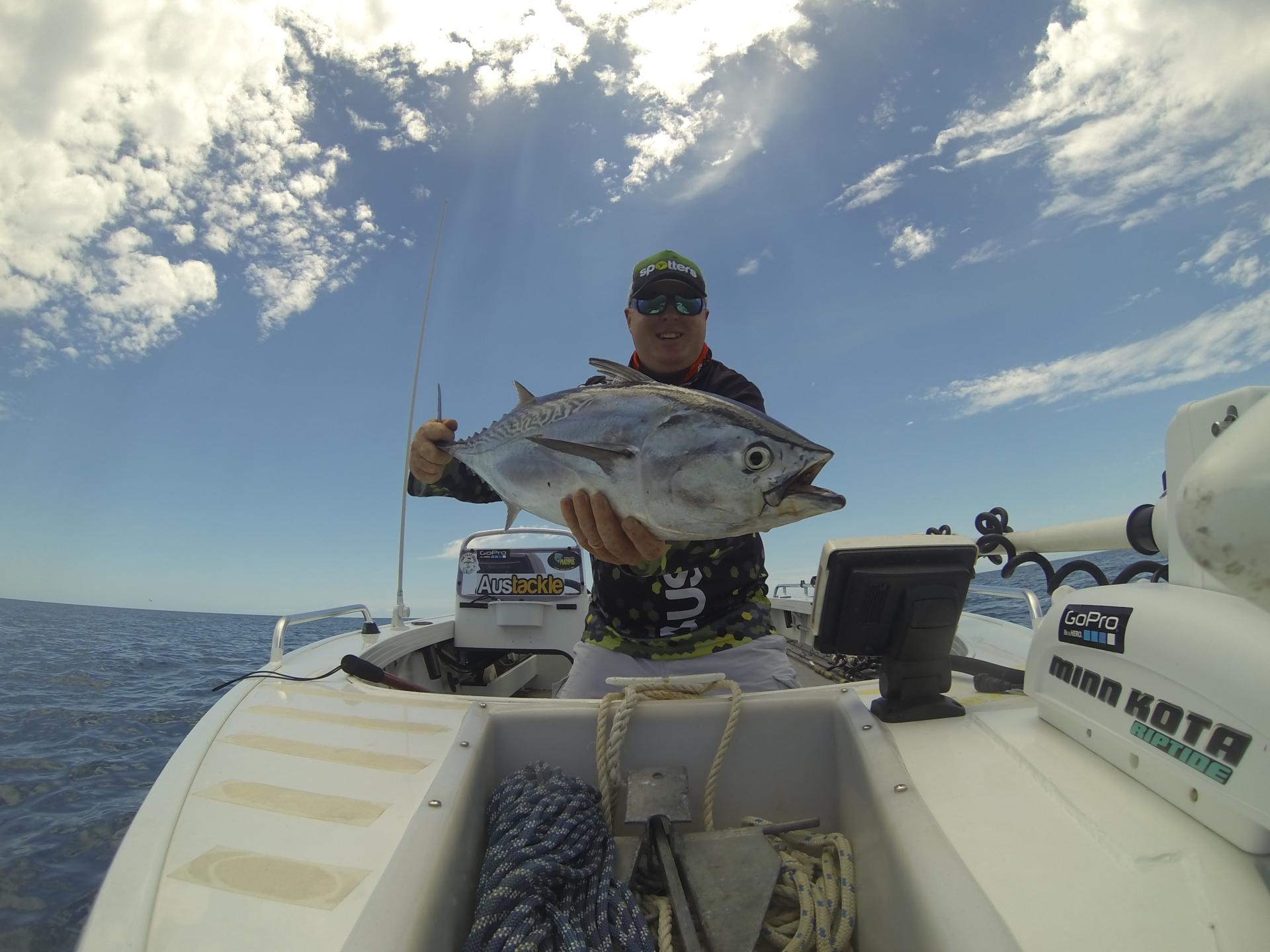 tuna stickbaiting surface fishing platypus bay hervey