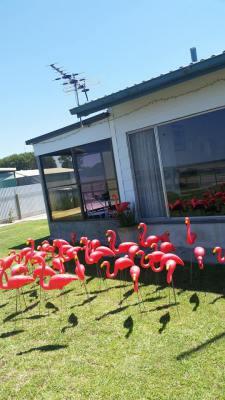 Rita's Beach Front  Flamingo Surprise