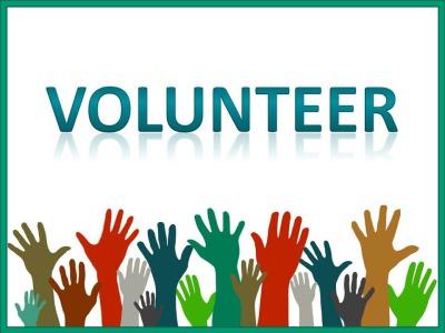 Volunteer Opportunity - Casey Trees