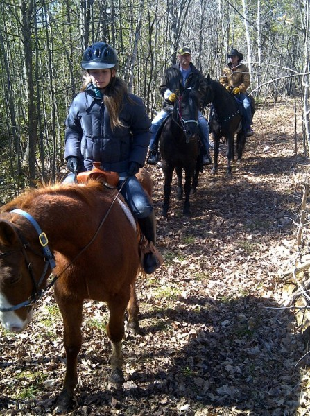 trail ride, horseback riding, randonnée à cheval