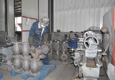 Globe Valve workshop