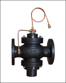 Self-actuated differential pressure control valve