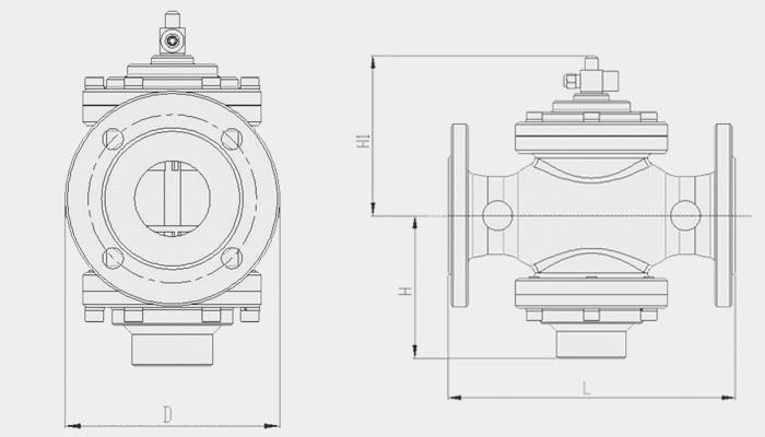 self-actuated differential pressure control valve
