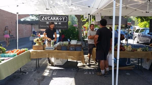 24 Carrot Farm