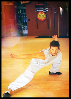 This is an image of Sifu Matthew Banks