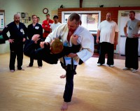 Sensei Alex demonstrating a take down at the 2015 MGJ Retreat.