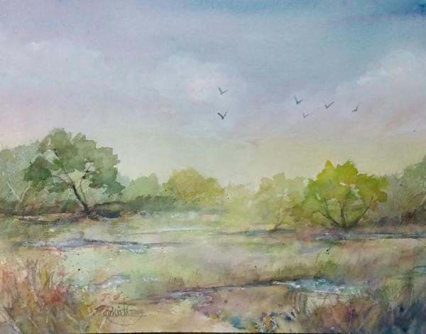 Mississippi River Wetland