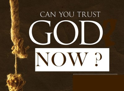 In Whom Do You Trust Now?